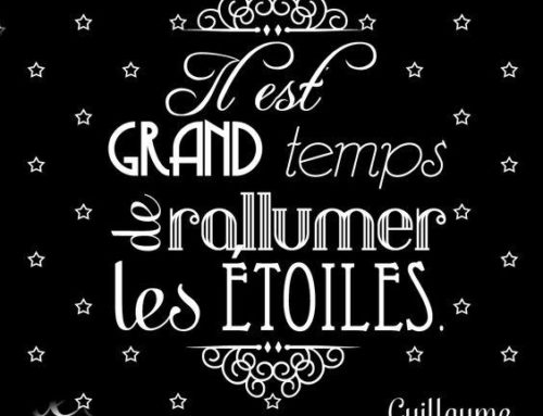 *** 2017 VOEUX ! ***
