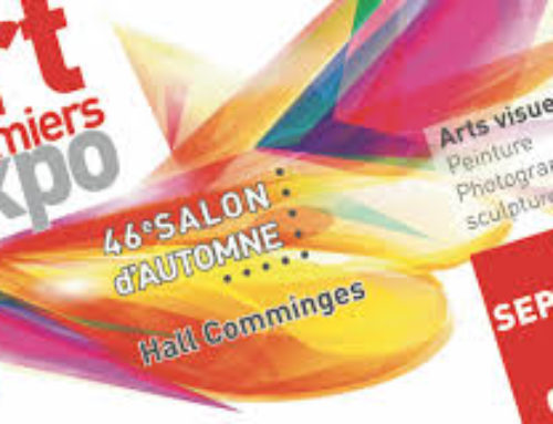 *SALON D'ART CONTEMPORAIN D'AUTOMNE*